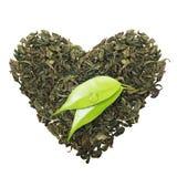 与叶子的绿茶 免版税库存图片