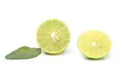 与叶子的lemond 免版税库存照片