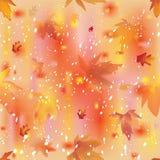 与叶子秋天的无缝的五颜六色的秋季构成和雪落 免版税库存照片