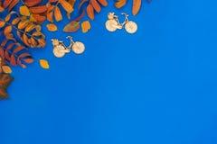 与叶子,玩具的秋天蓝色背景 库存图片