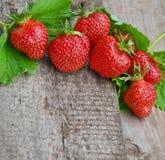 与叶子1的草莓 免版税库存图片