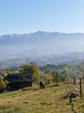与吃草马和老小屋的农村山风景 库存照片