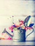 与各种各样的五颜六色的庭院花和园艺工具的老喷壶 免版税库存照片