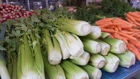 与各种各样的新鲜蔬菜的长的柜台沙拉的,批发市场贸易 股票视频