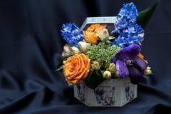 与各种各样的春天花的植物布置 免版税库存图片