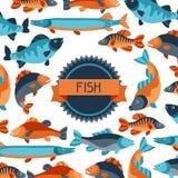 与各种各样的鱼的背景 给的小册子、横幅、flayers、文章和社会媒介做广告图象 免版税库存图片