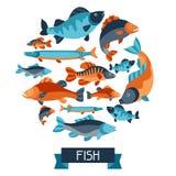与各种各样的鱼的背景 给的小册子、横幅、flayers、文章和社会媒介做广告图象 免版税库存照片