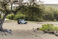 与吉普,大岛,夏威夷的Waipio谷 免版税图库摄影
