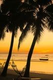 与吊床和椰子树剪影的橙色海岛日出 库存照片