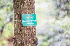 与名字板极的树在公园 库存照片
