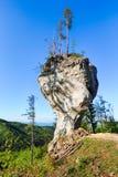 与名字Budzogan的大岩石在斯洛伐克 库存照片