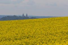 与后边教会的油菜领域 免版税图库摄影