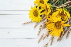 与向日葵和麦子耳朵花束的背景在丝毫 免版税图库摄影