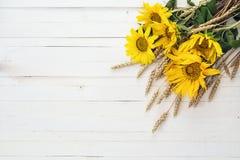 与向日葵和麦子耳朵花束的背景在丝毫 免版税库存照片