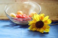 与向日葵的花的静物画 免版税库存照片