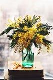 与含羞草的静物画在窗口基石的绿色瓶 免版税库存照片
