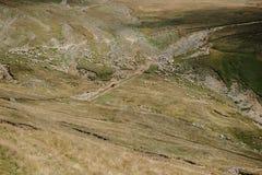 与听见的绵羊的山高原 图库摄影