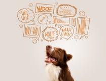 与咆哮泡影的逗人喜爱的狗 免版税库存照片