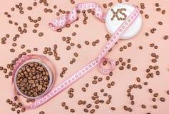 与咖啡因概念的反脂肪团奶油 免版税库存图片