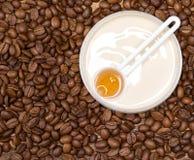 与咖啡因的反脂肪团化妆用品 免版税库存照片