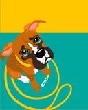 与哀伤的拳击手狗的海报布局 库存图片