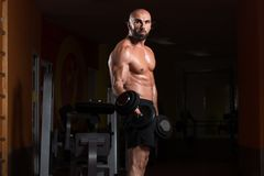 与哑铃的二头肌锻炼在健身房 免版税图库摄影