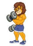 与哑铃的狮子 免版税库存照片