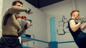 与哑铃的Kickboxers人训练拳打在战斗俱乐部 箱子训练概念 股票录像
