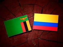 与哥伦比亚的旗子的赞比亚旗子在被隔绝的树桩 库存例证