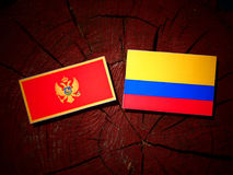 与哥伦比亚的旗子的门的内哥罗的旗子在被隔绝的树桩 库存例证