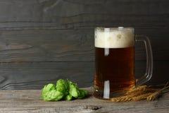 与啤酒花球果树和麦子耳朵的玻璃啤酒在与拷贝空间的黑暗的木背景 啤酒啤酒厂概念 背景啤酒包含梯度滤网 免版税库存图片