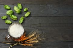 与啤酒花球果树和麦子耳朵的玻璃啤酒在黑暗的木背景 啤酒啤酒厂概念 背景啤酒包含梯度滤网 顶视图 免版税库存图片