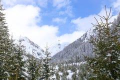 与喀尔巴阡山脉的冬天风景 免版税库存照片