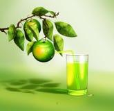 与喝从绿色苹果的秸杆的新鲜的汁液 免版税库存照片