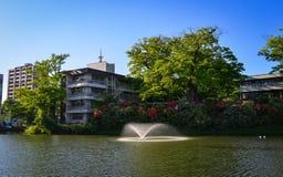 与喷泉的湖风景在秋田,日本 免版税图库摄影