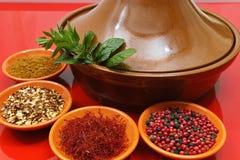 与四个碗的摩洛哥tahine用香料和新鲜薄荷 库存照片