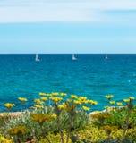 与四条风船的花 蓝色海水和天空 免版税库存照片