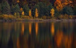与四桦树的秋天风景与黄色叶子和他们美好的色的反射在小Mounta的寂静的水中 免版税库存图片
