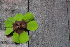 与四片叶子三叶草的邀请卡片 库存图片