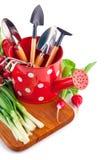 与园艺工具和新鲜蔬菜的喷壶 免版税库存图片