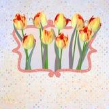 与圆点的纸美丽的郁金香。EPS 10 库存图片
