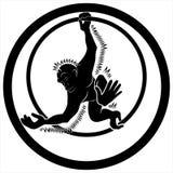 与圆环的猴子 免版税库存照片