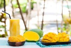 与圆滑的人汁拷贝空间的新鲜和干芒果果子 免版税库存照片