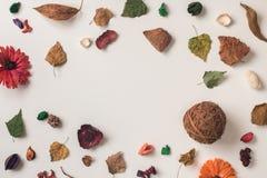 与圈子空间的秋天背景在中心 免版税库存图片