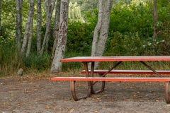 与土地面和树的暗红野餐长凳 库存图片