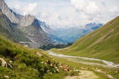 与土拨鼠的落矶山脉风景在勃朗峰足迹 免版税库存照片
