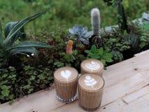 与土气多汁的桌的Capuccino咖啡 免版税库存图片