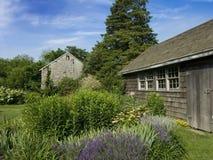 与土气棚子的淡紫色补丁 免版税库存照片