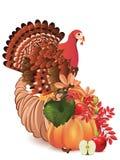 与土耳其鸟的聚宝盆 库存例证