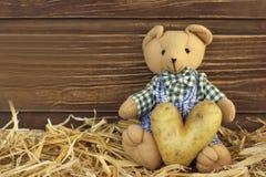 与土豆心脏的玩具熊 免版税库存照片